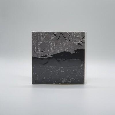 ENVY -A DEAD SINKING STORY- CD (JAPAN PRESS)