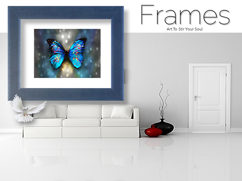 Butterfly Shadows Frames
