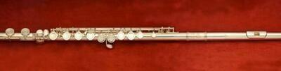 Di Zhao 201COA Flute