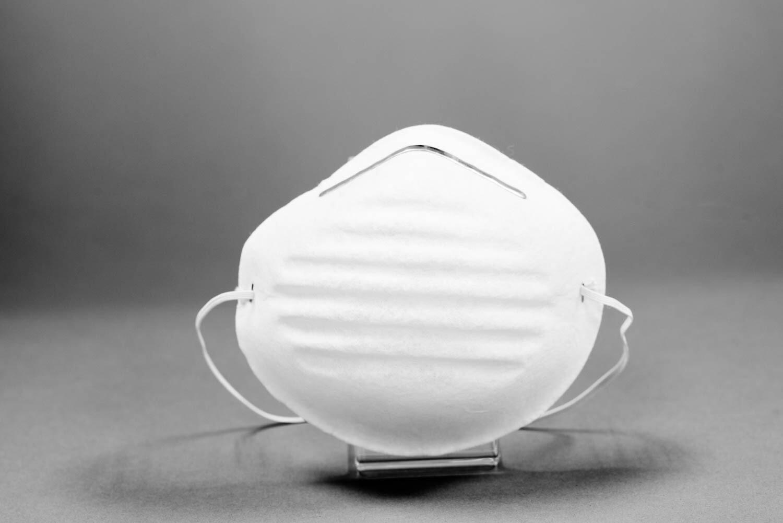 Dust Mask, Standard (50/Box)