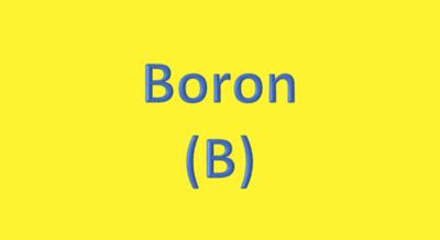Water Analysis, Boron (B)