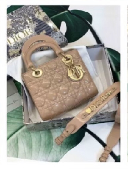 Nude & Gold Bag