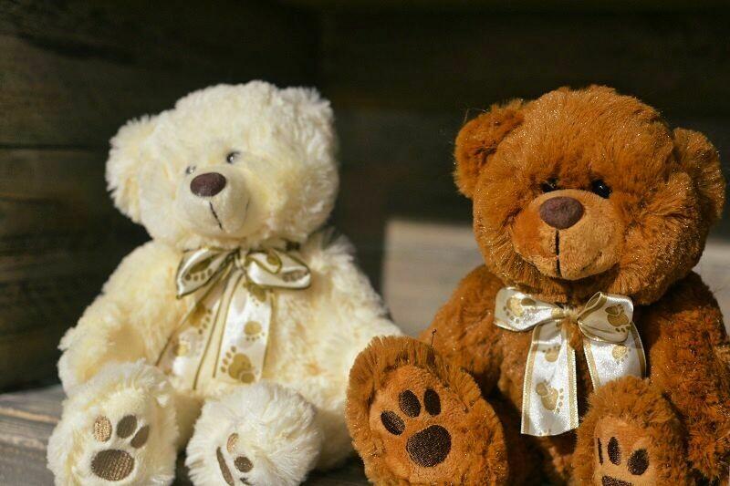 Teddybär weiss oder braun