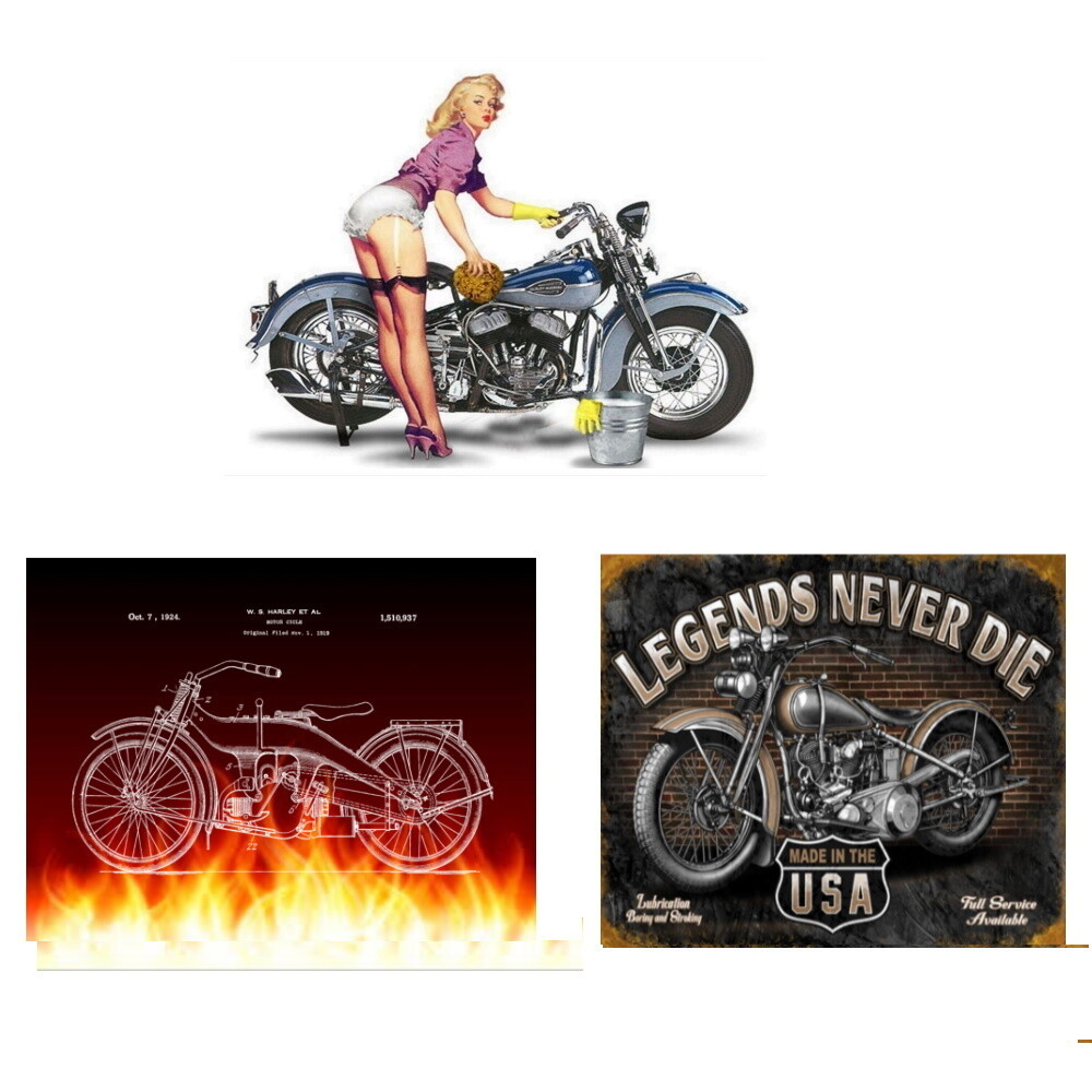 Harley Wall Art - Unframed