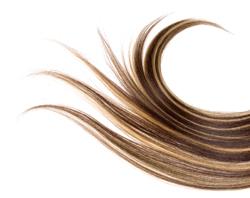 Hair Tissue Mineral Analysis Test