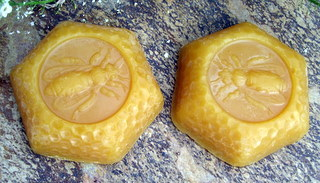 Beeswax (1 oz) Hex