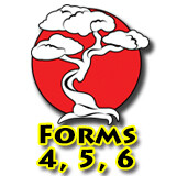 Forms 4, 5 & 6 Bundle