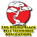 3rd Degree Black Belt Technique Applications