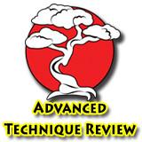 Advanced Technique Review