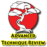 Advanced Technique Review