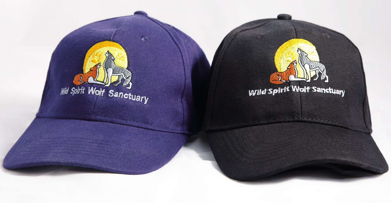 WSWS Cap with Logo
