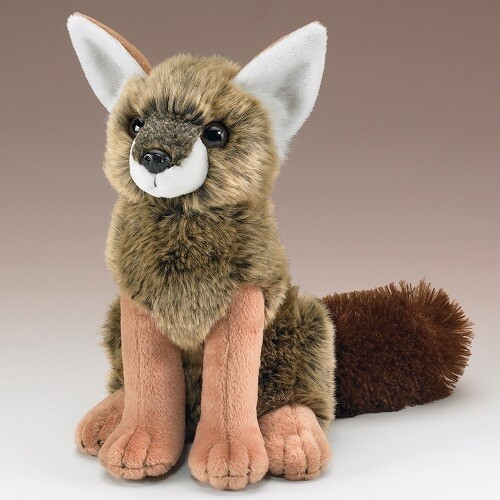 Clearance Coyote