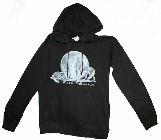 Hoodie with Large WSWS Logo