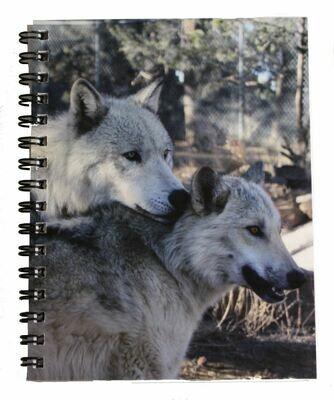 Notebook - Draco & Leia