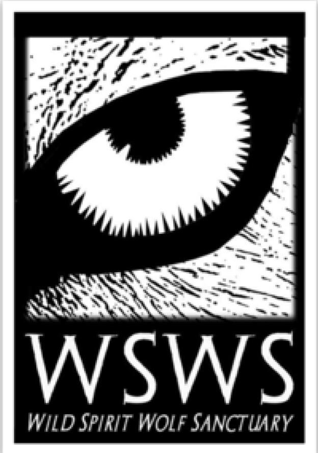 Sticker - Wolf Eye Logo