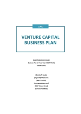 Business plan e pitch deck  per business angels o Venture capitals
