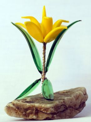 Alpine Plants - Lily