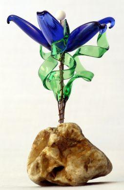 Alpine Plants - Blue