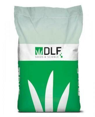 Насіння газонних трав DLF-Trifolium Робустіка 20 кг