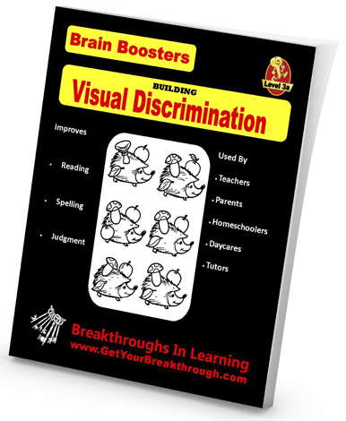 Visual Discrimination - Level 3