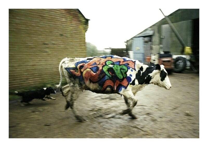 Steve Lazarides - Banksy - Wild Style Chase