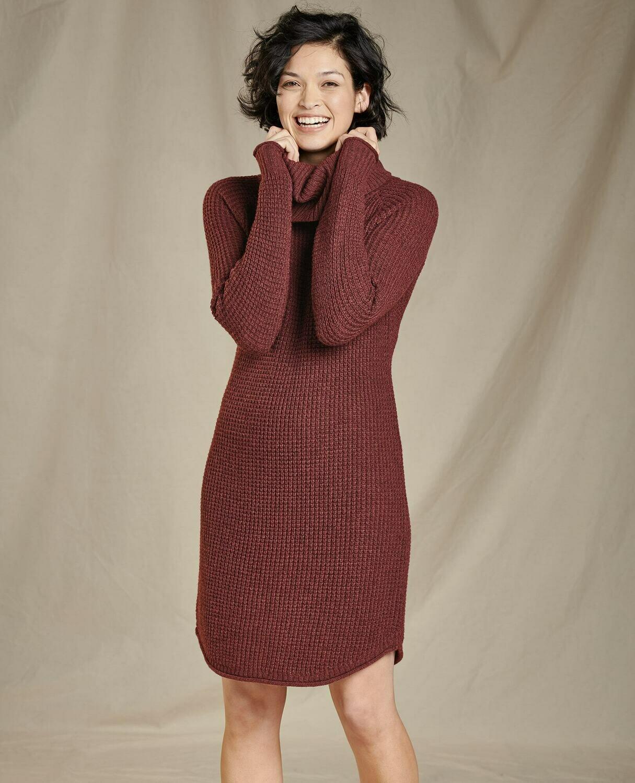 Toad&Co. Chelsea Turtleneck Dress