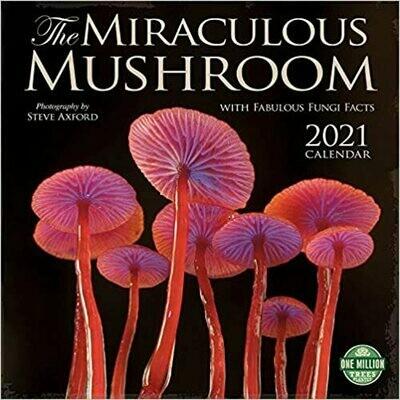 2021 Miraculous Mushroom Wall Calendar