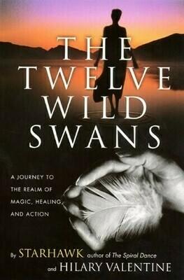 Twelve Wild swans