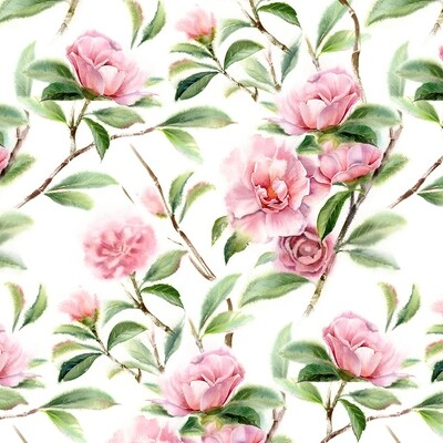 Spring Blooming Camellias