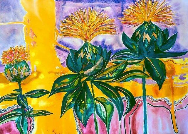 Safflower sunshine