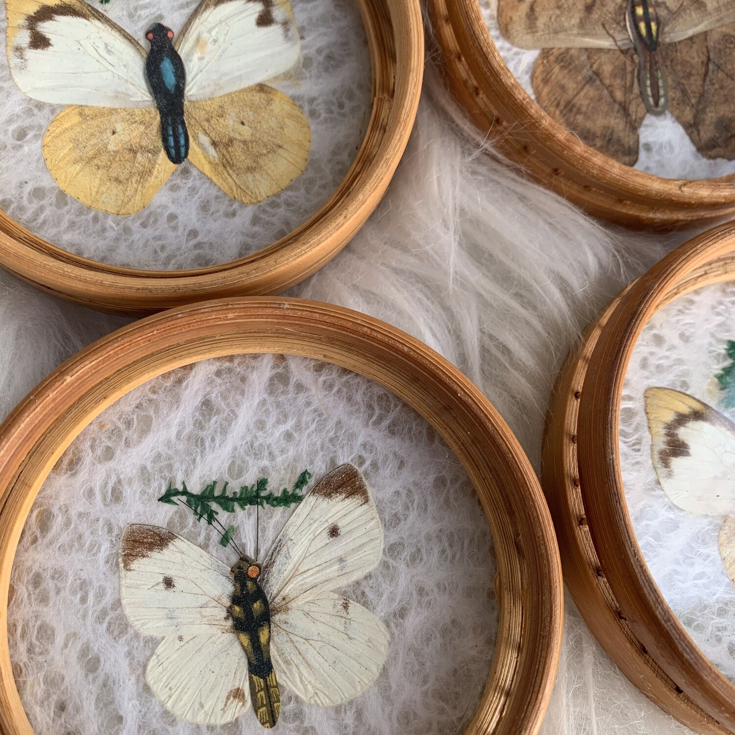 Vintage Bamboo Butterfly Coasters Set Of 4
