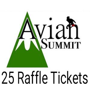 25 Raffle Tickets