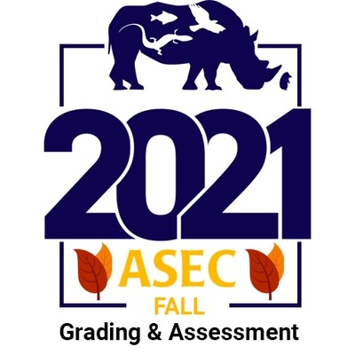Grading & Assessment in the 3-Dimensional Classroom