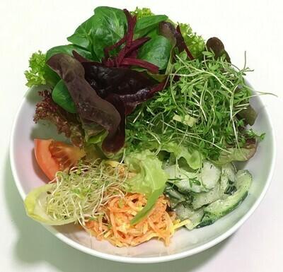 Saisonsalat mit Dressing