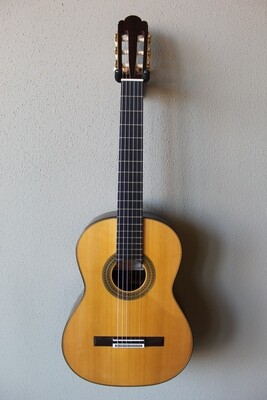 Francisco Navarro Grand Concert Torres Model Classical Guitar