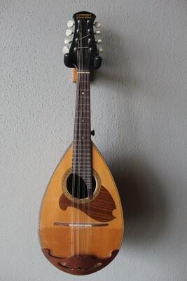 Used Suzuki Model 45 Mandolin with Gig Bag