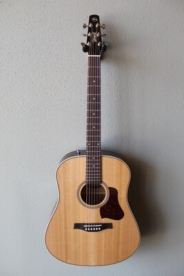 Seagull Coastline Momentum Acoustic/Electric Guitar with Gig Bag