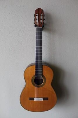 Francisco Navarro Special Concert Classical Guitar - Cedar Top