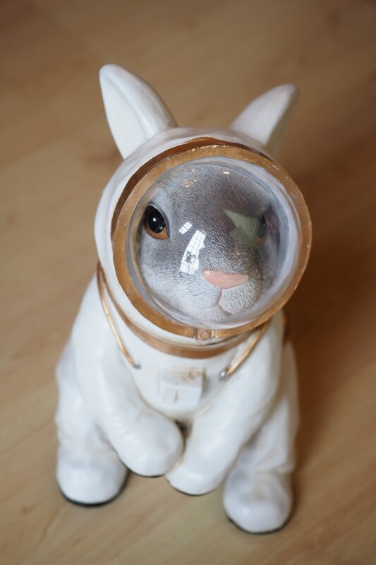 Astronauten-Hase