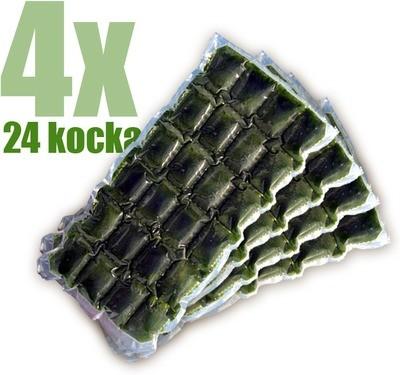 Gyorsfagyasztott bio búzafűlé 4x24 kocka
