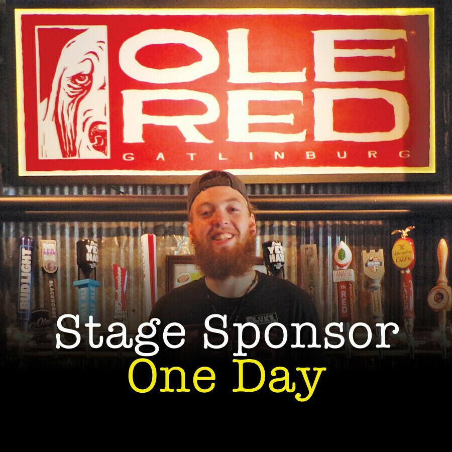 Sponsor a Stage Silver- One Day
