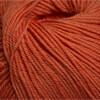 Cascade Yarns 220 Superwash #822 Pumpkin
