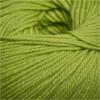 Cascade Yarns 220 Superwash #851 Lime