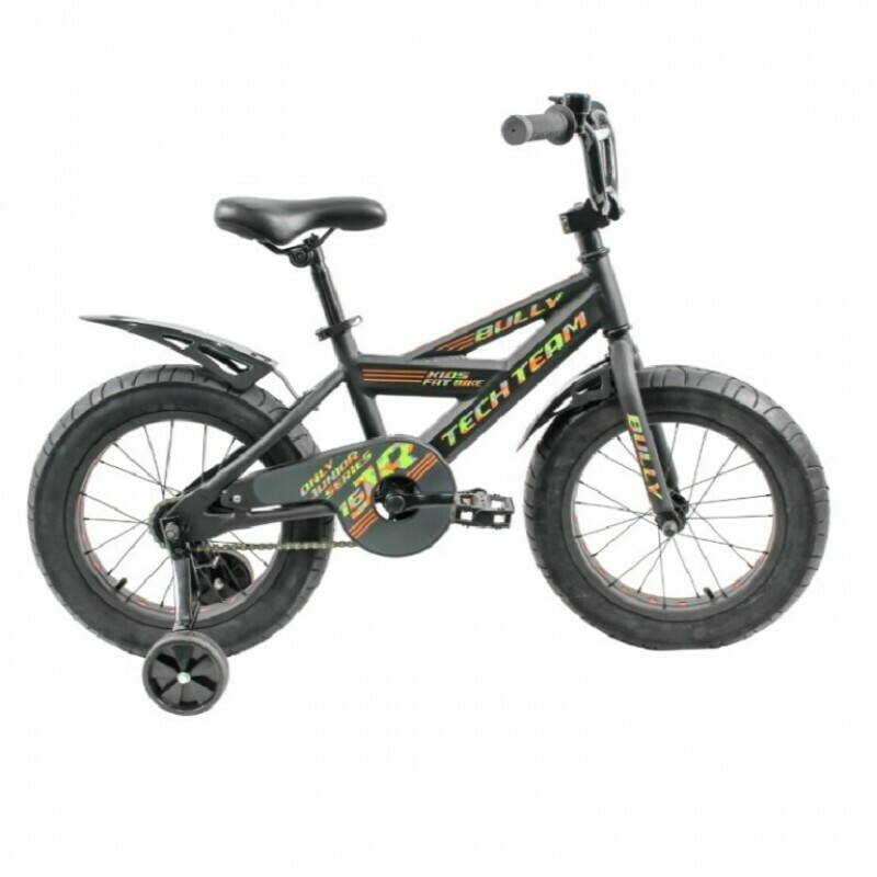 Велосипед 18 Fat bike TT BULLY