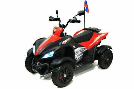 Электрический квадроцикл RiverToys P333PP