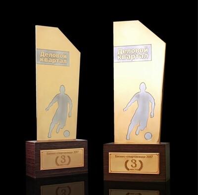 Спортивная награда победителям