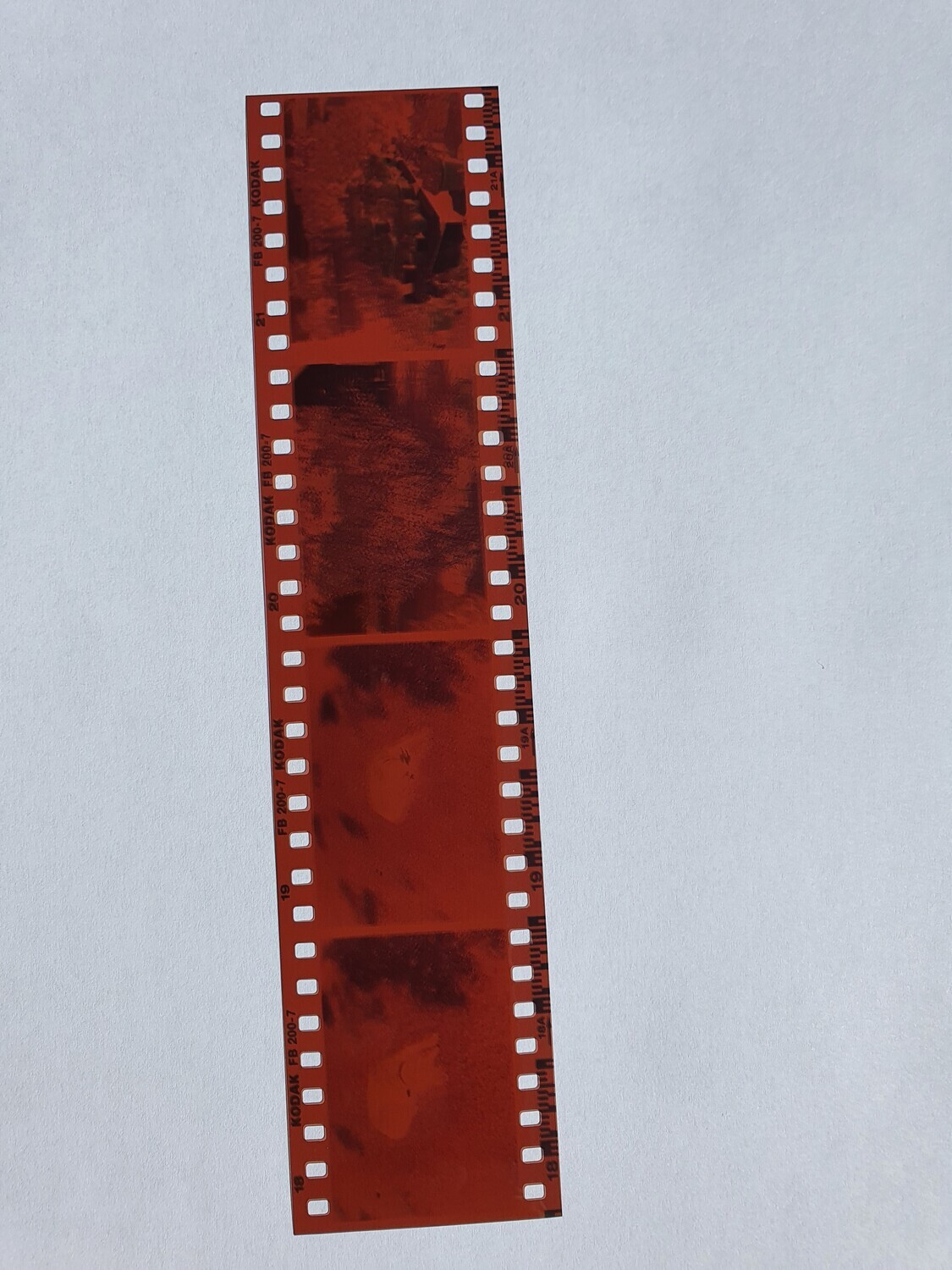 Development of a 135 negative colour film - 35mm format and 36 prints on glossy paper in 9x13 cm format.