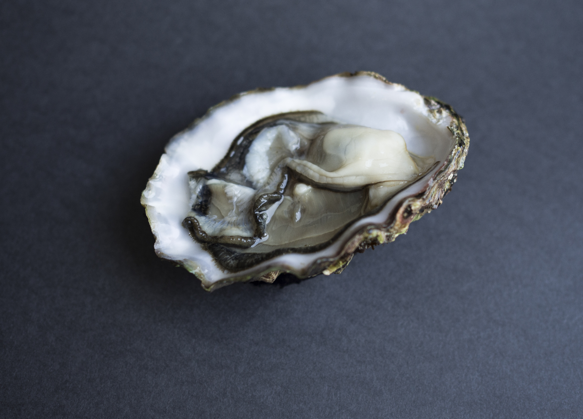 Blanc Oyster Series   Stay Home Special