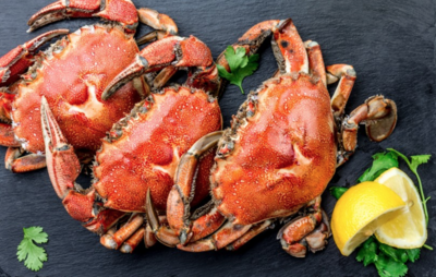 Dungeness Crabs | Stay Home