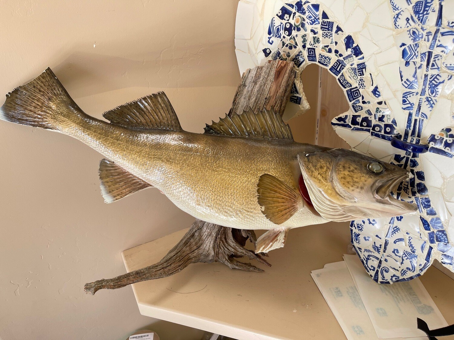 Large Trout Taxidermy 29 in long some damage as is